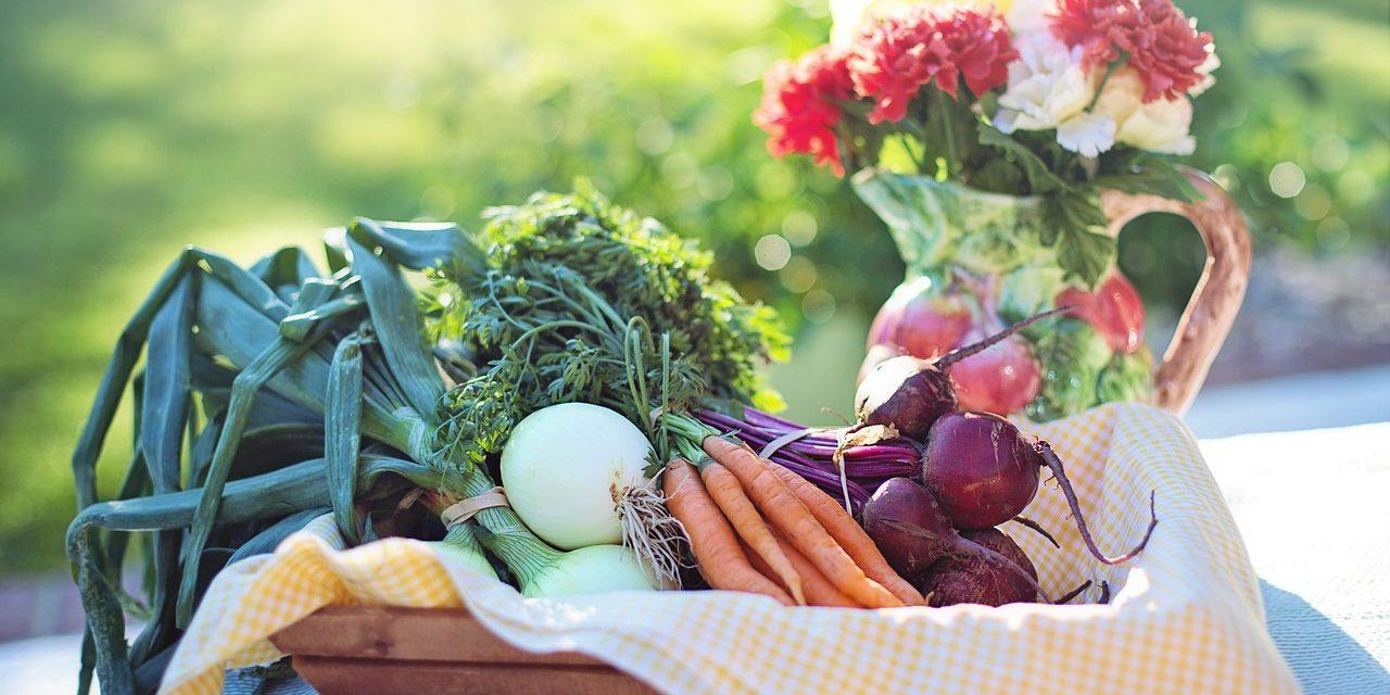 Dieta, a produkty wysokiej jakości