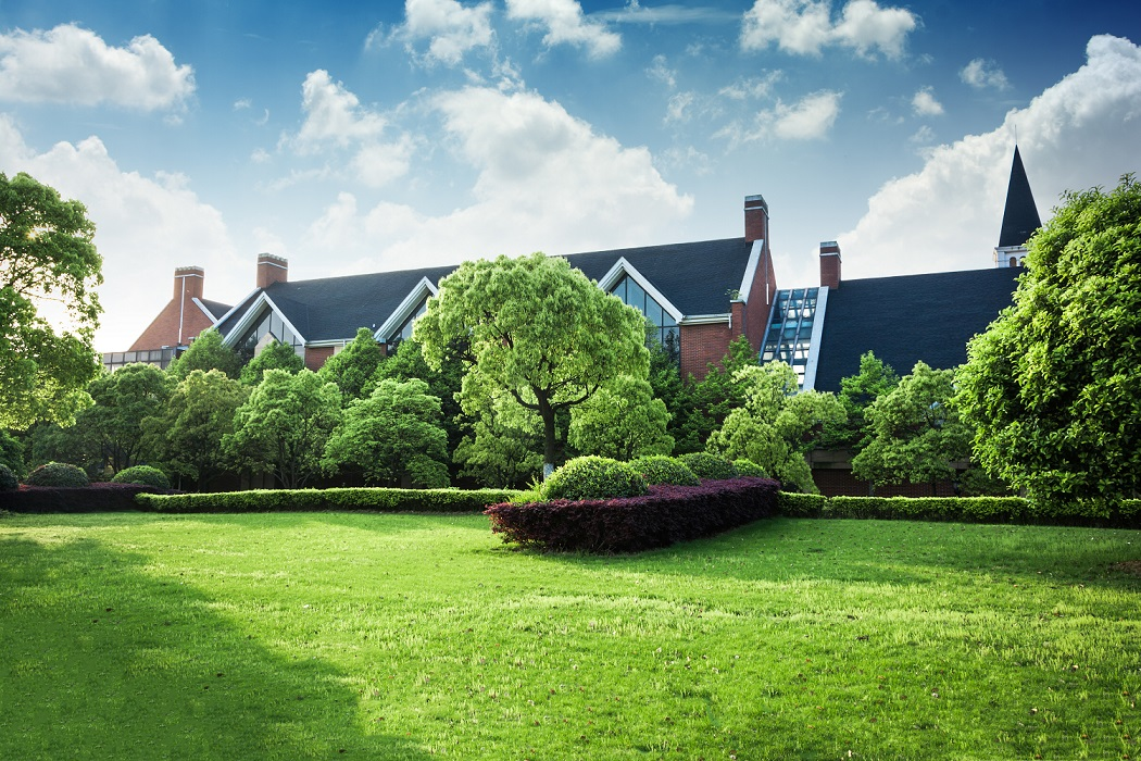 Środki do ochrony ogrodu i domu